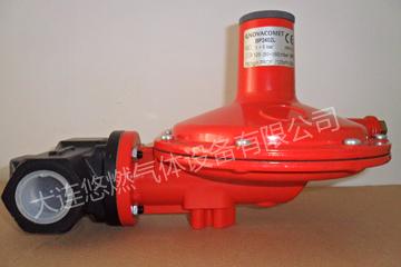 法国Raygas 2402L系列调压器